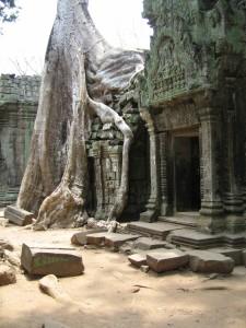 Cambodia (88)