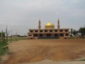 Cambodia (9)