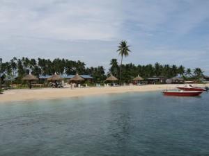 Borneo (96)